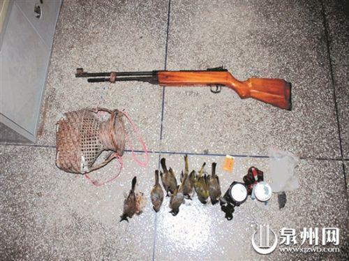 气枪及猎物