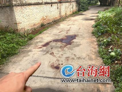 ◆事发平房附近小道上遗留着血迹