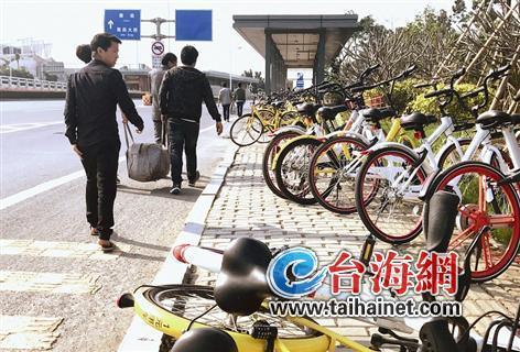 """▲环岛干道,近百辆单车成""""僵尸车"""""""