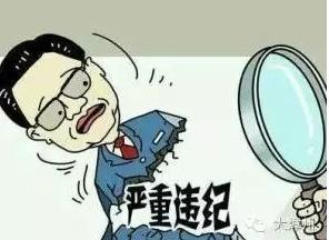 台海网4月13日讯 (海峡导报-大漳州)龙文区4名干部涉嫌严重违纪,正接受组织审查。