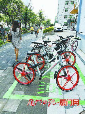 湖滨南路,市民自觉将共享单车停放在新施划的停放点内。