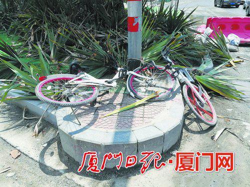共享单车乱停乱扔现象仍较多。