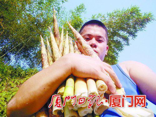 """""""镜头小哥""""抱着家乡的竹笋。"""