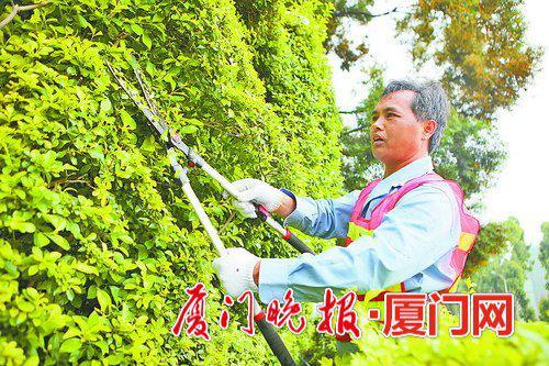 -杨润长用剪出的绿化造型,为城市增添亮色。