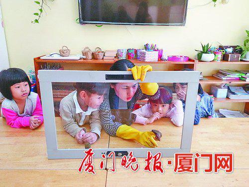 -幼儿园的小朋友观察蜗牛爬过玻璃和刀锋。韩扬供图