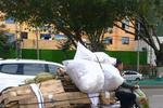 厦门:废纸一年涨价超三成 产纸和用纸企业有苦难言