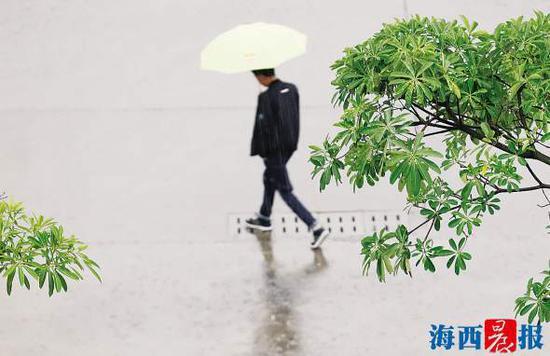 昨日下午,一场大雨让市民猝不及防。记者陈理杰摄