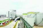 全国最大葵花油项目在厦投产 五年后年收入将达30亿