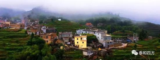 云雾缭绕的白交祠村