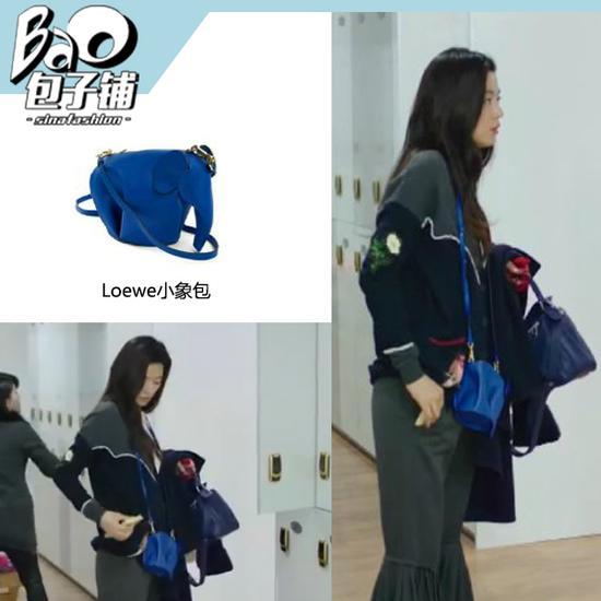 全智贤背Loewe小象包包