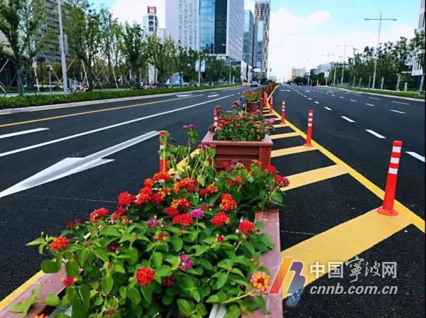 东部新城1条景观大道完善设施 整改有颜值有内涵
