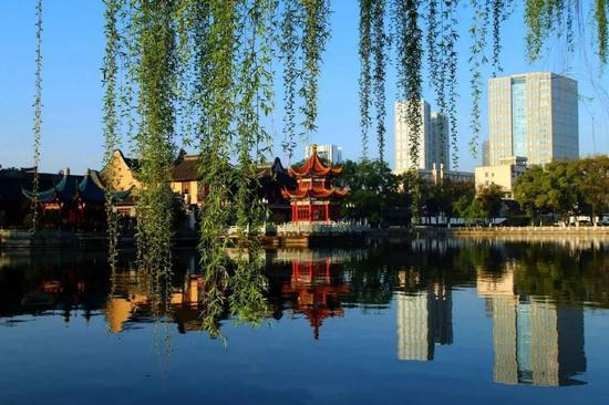 月湖对于宁波人来说,不像是一个景点,它更像是宁波人自家的院子。