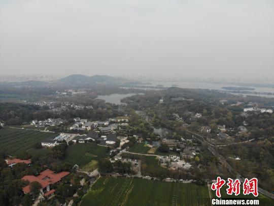 图为杭州。 张煜欢 摄