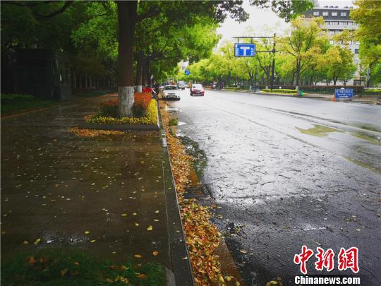 浙江多地迎来阴雨天气。 张煜欢 摄