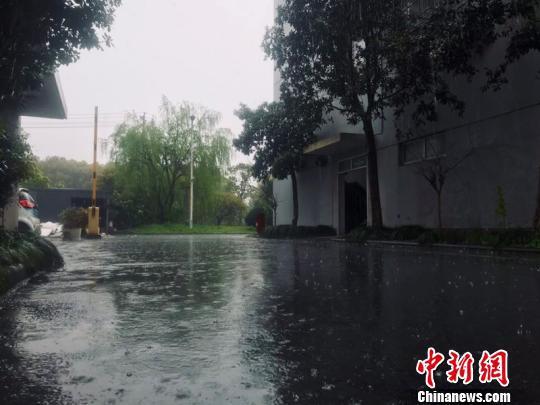 浙江多地迎来阴雨天气。 刘方齐 摄