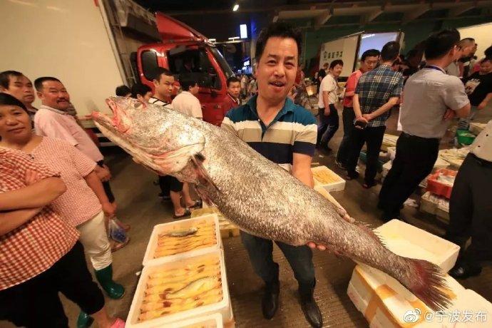东海第一网海鲜已到宁波 水产批发市场一派火热