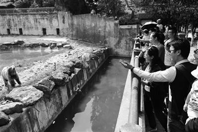 游客在宁波雅戈尔动物园游览