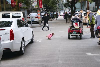 白鹤新村,一只宠物狗在路上大便。
