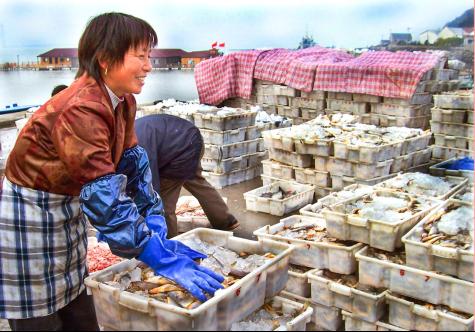 图为渔民给海鲜装箱