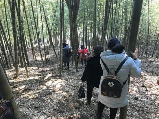 记者跟随考古学家探寻鄞县故城遗址