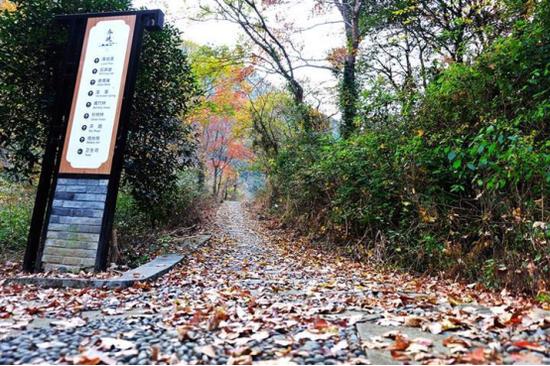 北仑春晓大岙山游步道开放 登山爱好者前来休闲健身