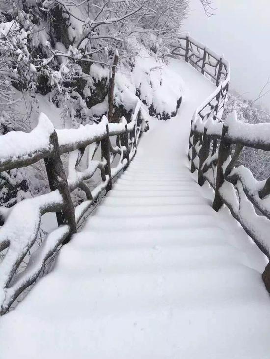 四明山积雪最深已达30厘米。图片由余姚市气象局提供