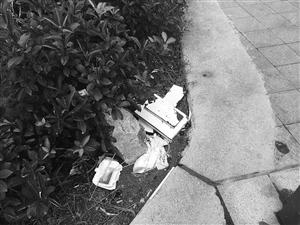 绿化带里的垃圾 记者樊莹摄