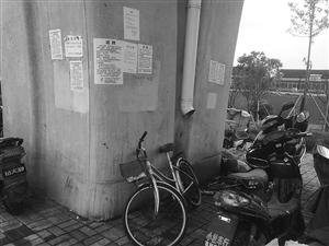 """五乡地铁高架下有许多""""牛皮癣""""小广告 记者樊莹摄"""