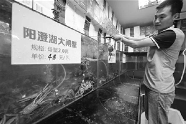 阳澄湖大闸蟹宁波上市 受双节影响价格上涨