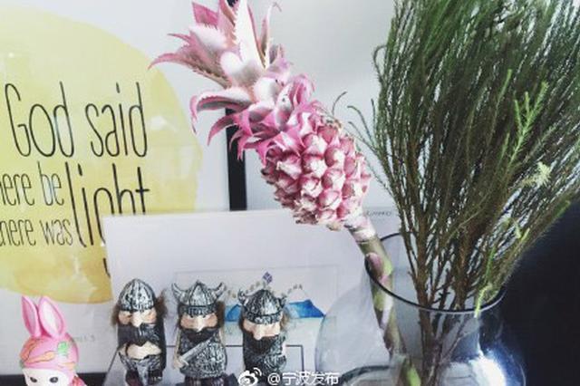 少女心爆棚 宁波花市最近流行进口粉色小菠萝花束