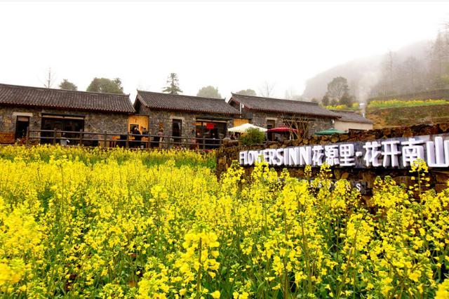 宁波宁海第七届桑洲油菜花节开幕 吸引众多游客观赏