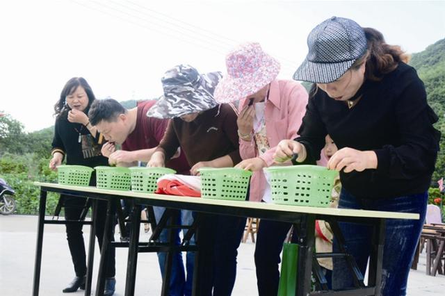 象山大徐镇雅林溪村以桑果为媒 举行第六届桑果节