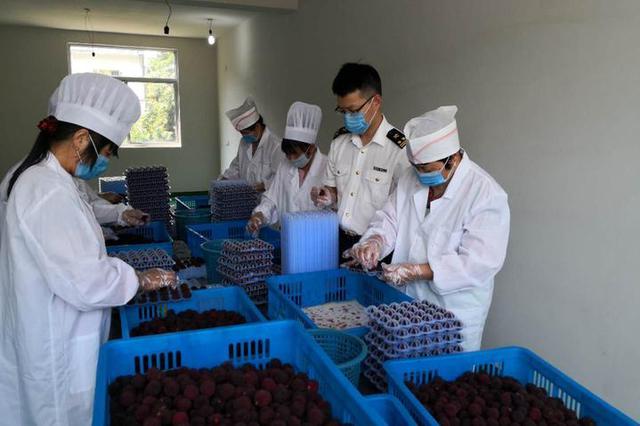四年有15吨宁波杨梅到香港 从出货到品尝不超24小时