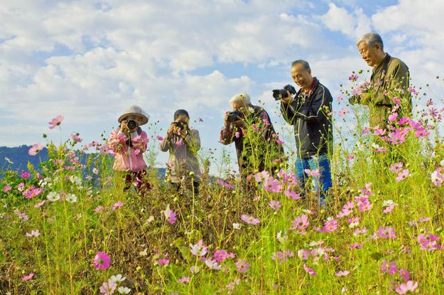 宁波养老掠影 东钱湖举办生活艺术节为养老生活添彩