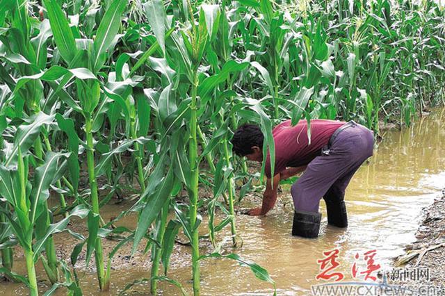 温比亚带来充沛降水 宁波积极备战未出现明显灾情