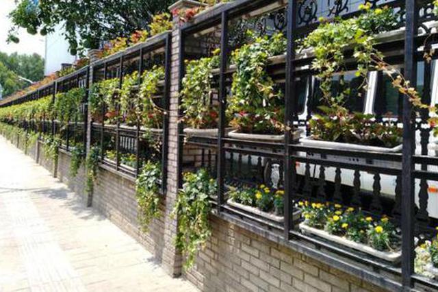 宁波中心区启动新一轮拆墙透绿 营造城市大花园氛围