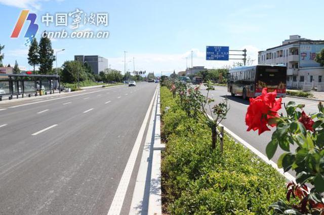 打造甬城美丽经济交通走廊 雅戈尔大道完成修复提升