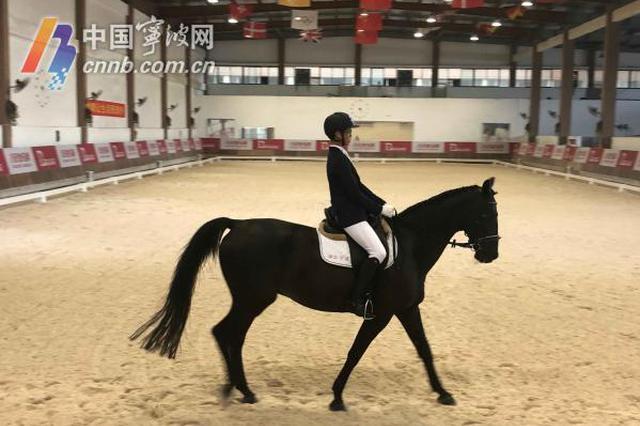高大上的省运会马术比赛开始了 宁波骑手夺首金