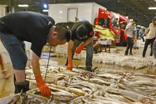 吃货们久候多时的宁波第一网海鲜来啦 400吨集中上市