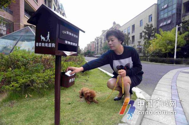 慈溪有小区装上宠物便便箱 引导居民文明养狗有妙招
