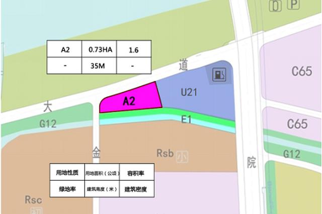 与滨江公园对望 高新区一原商业用地转为文化设施用地