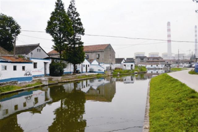 新碶实现区域河道水质提标 因水质变化的投诉为零