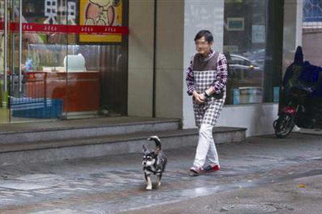 宁波犬伤门诊患者中半数是被自家狗咬伤