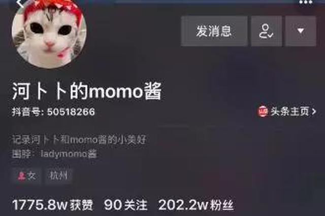 25岁慈溪姑娘养的一只猫成了网红 俘获200多万粉丝
