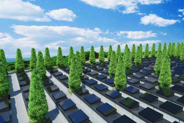 第一届公益生态树葬活动征集观摩者和志愿者