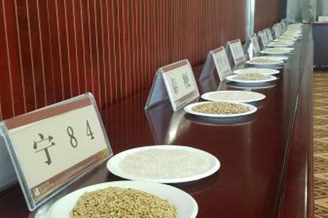 宁波十大好稻米评选产生 看看最好的稻米