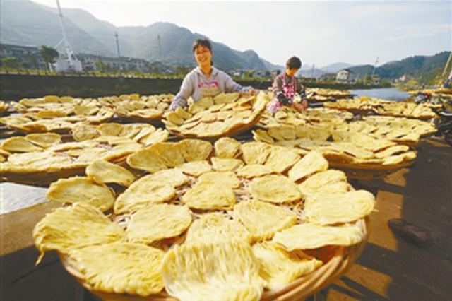 海曙樟村切面是樟村人的传统食品 如今成了网红