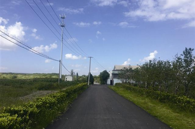 杭州湾新区城乡争优三年攻坚行动发布 创建美丽乡村