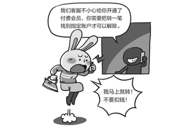 宁波1女子在网上买了个89元电熨斗 不料被骗48000元