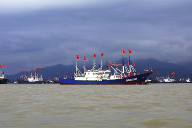 宁波莼湖镇:鲜下手为强 触舌尖海味